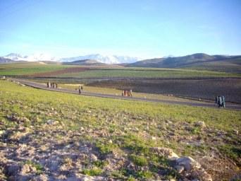 plateau de Kik - entre Moulay Brahim et Lalatakerkoust