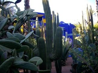jardin Majorelle - Marrakech