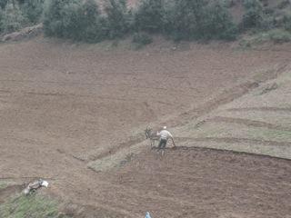 Tirkrist - travaux des champs
