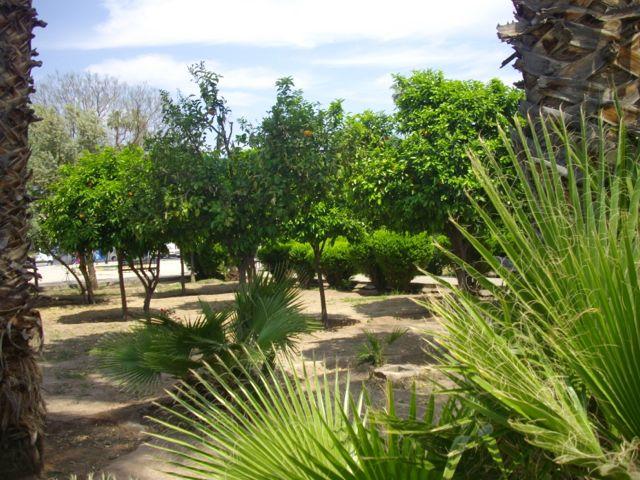lesjardinsdelakoutoubia-marrakecharil2014